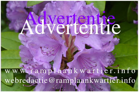 Advertentie advertentie