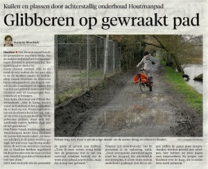 Haarlems Dagblad 24-01-2014